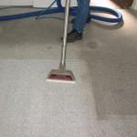 カーペットを掃除する7つの方法